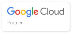 Google Enterprise Partner